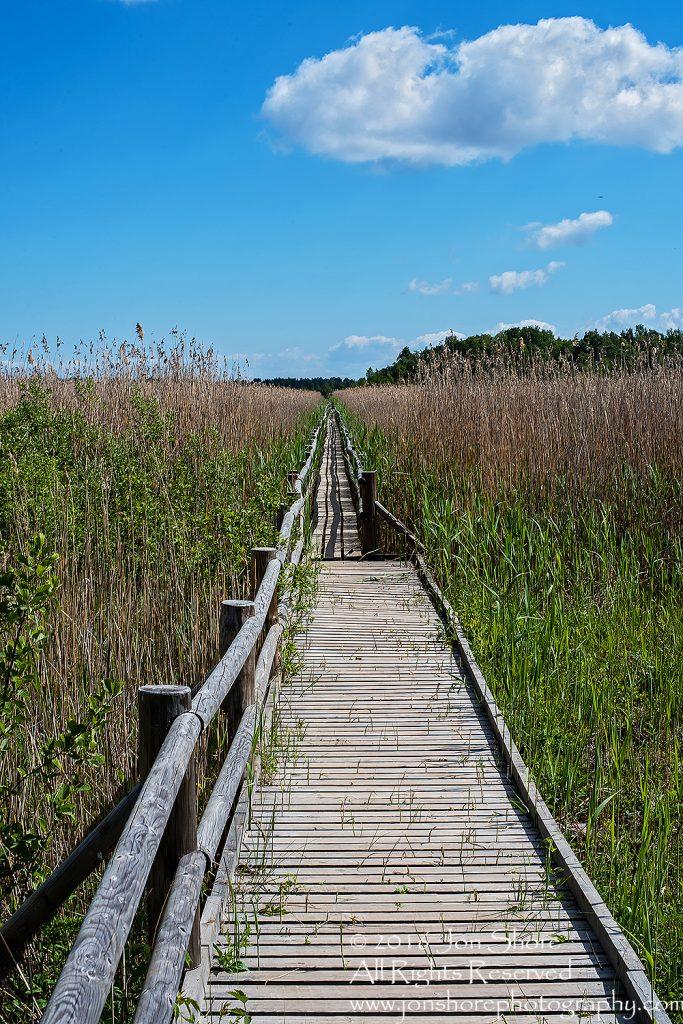 wooden-walkway-kemeri-park-sm-4669