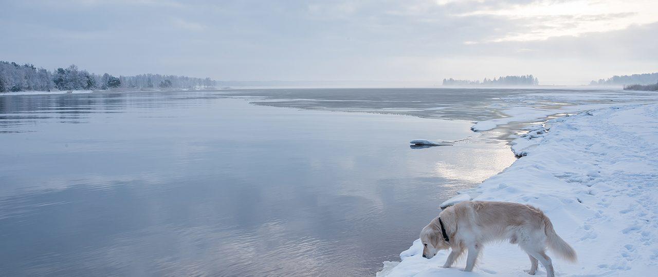 billy-lielupe-latvia-winter-2017-150dpi-6889